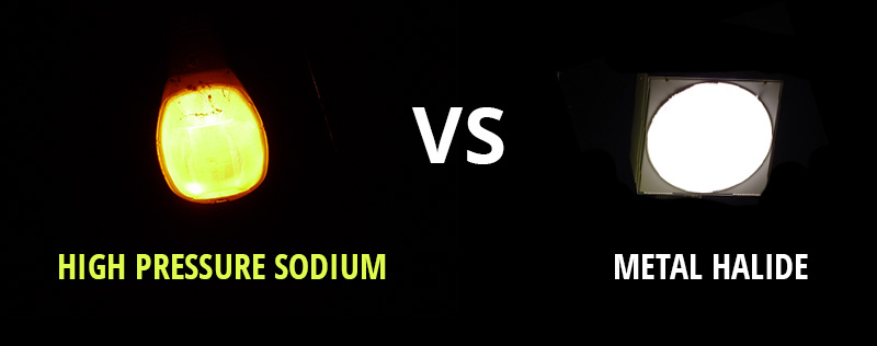 metal-halide-vs-high-pressure-sodium