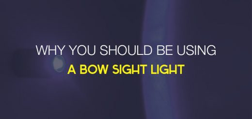 Why You Should use a Bow Sight Light
